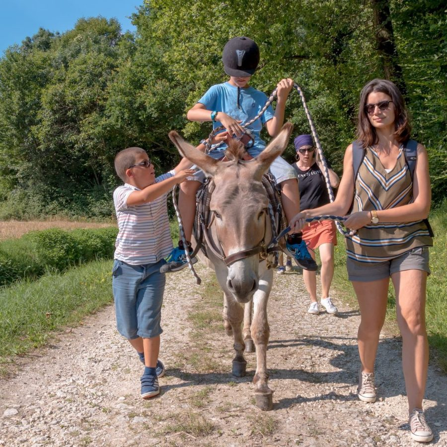 Loisirs en famille à Saintes et Saintonge en Charente-Maritime